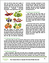 0000090136 Word Template - Page 4