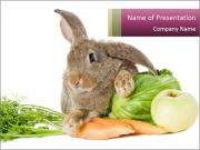 Bunny with fresh vegetables carrot cabbage and apple isolated PowerPoint Templates