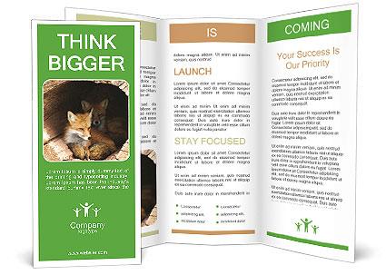 0000090142 Brochure Template