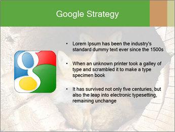 Furry Fox PowerPoint Template - Slide 10