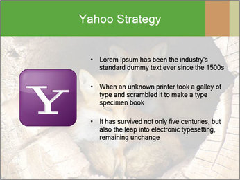 Furry Fox PowerPoint Template - Slide 11