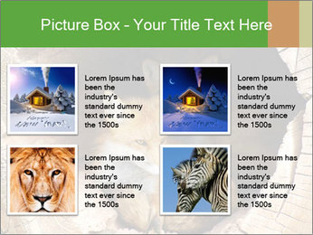 Furry Fox PowerPoint Template - Slide 14
