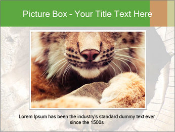 Furry Fox PowerPoint Template - Slide 15