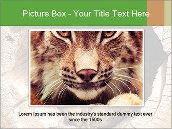 Furry Fox PowerPoint Template - Slide 16