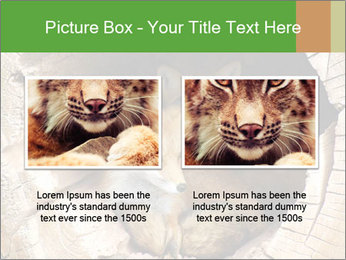 Furry Fox PowerPoint Template - Slide 18