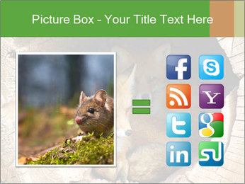Furry Fox PowerPoint Template - Slide 21
