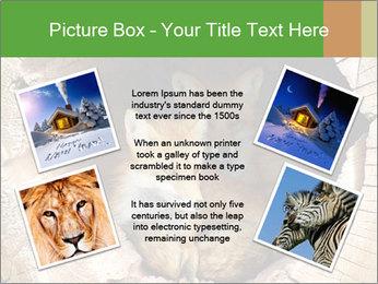 Furry Fox PowerPoint Template - Slide 24