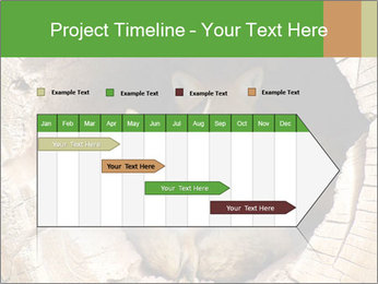 Furry Fox PowerPoint Template - Slide 25