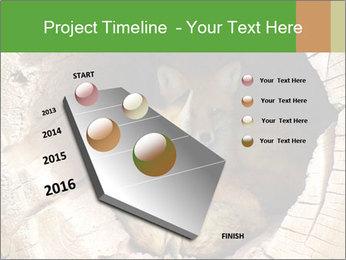 Furry Fox PowerPoint Template - Slide 26