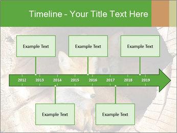 Furry Fox PowerPoint Template - Slide 28
