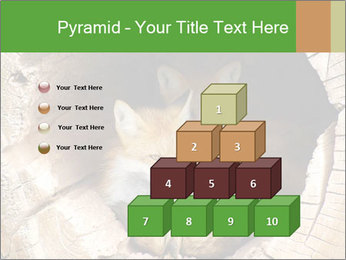 Furry Fox PowerPoint Template - Slide 31
