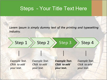 Furry Fox PowerPoint Template - Slide 4