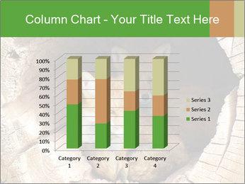 Furry Fox PowerPoint Templates - Slide 50
