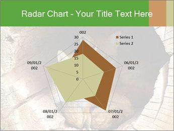 Furry Fox PowerPoint Template - Slide 51