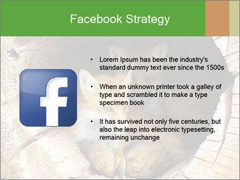Furry Fox PowerPoint Template - Slide 6