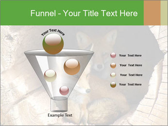 Furry Fox PowerPoint Templates - Slide 63