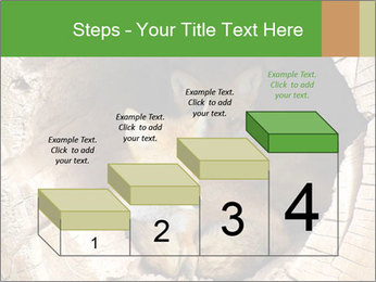 Furry Fox PowerPoint Template - Slide 64