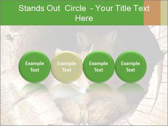 Furry Fox PowerPoint Template - Slide 76