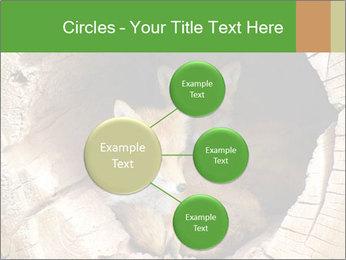 Furry Fox PowerPoint Template - Slide 79