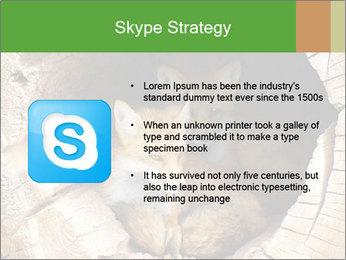 Furry Fox PowerPoint Template - Slide 8