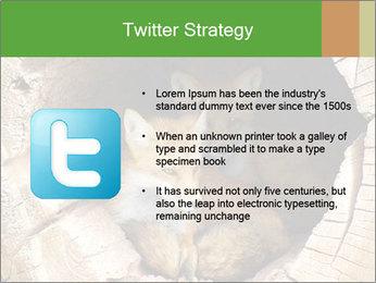 Furry Fox PowerPoint Template - Slide 9