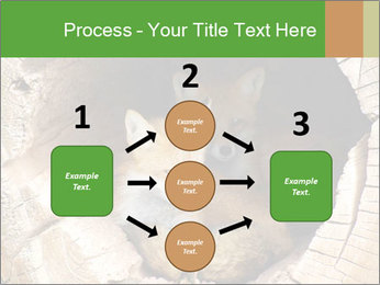 Furry Fox PowerPoint Template - Slide 92