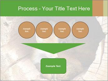Furry Fox PowerPoint Template - Slide 93