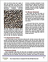 0000090144 Word Template - Page 4