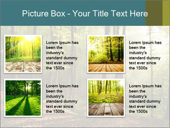 Backlight In Forest PowerPoint Template - Slide 14