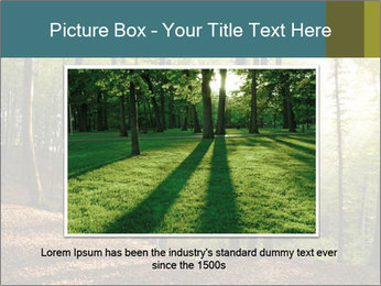 Backlight In Forest PowerPoint Template - Slide 15