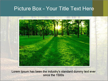 Backlight In Forest PowerPoint Template - Slide 16