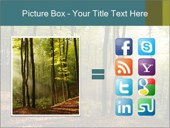 Backlight In Forest PowerPoint Template - Slide 21