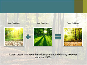 Backlight In Forest PowerPoint Template - Slide 22