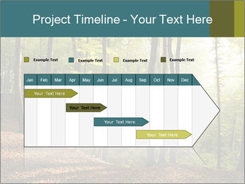 Backlight In Forest PowerPoint Template - Slide 25
