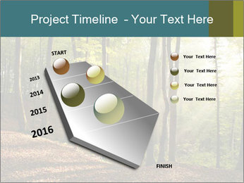Backlight In Forest PowerPoint Template - Slide 26