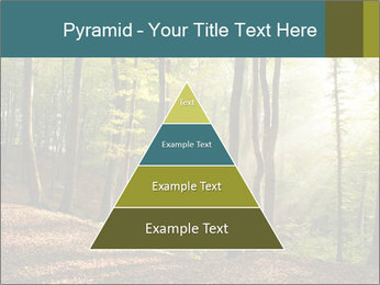 Backlight In Forest PowerPoint Template - Slide 30