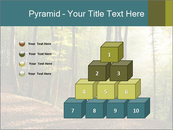 Backlight In Forest PowerPoint Template - Slide 31
