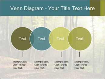 Backlight In Forest PowerPoint Template - Slide 32