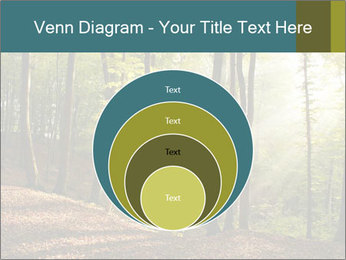 Backlight In Forest PowerPoint Template - Slide 34