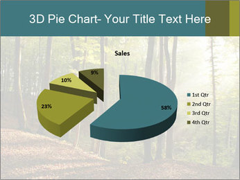 Backlight In Forest PowerPoint Template - Slide 35