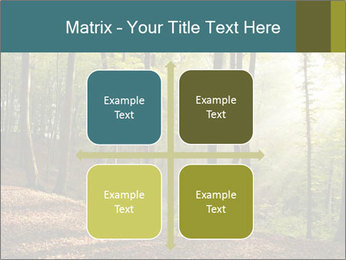 Backlight In Forest PowerPoint Template - Slide 37