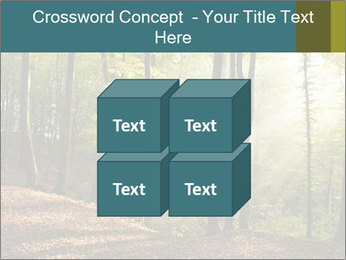 Backlight In Forest PowerPoint Template - Slide 39