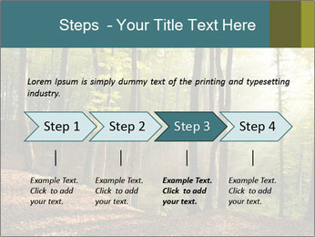 Backlight In Forest PowerPoint Template - Slide 4