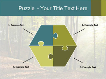 Backlight In Forest PowerPoint Template - Slide 40