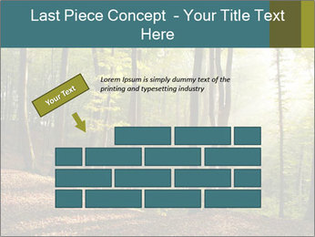 Backlight In Forest PowerPoint Template - Slide 46