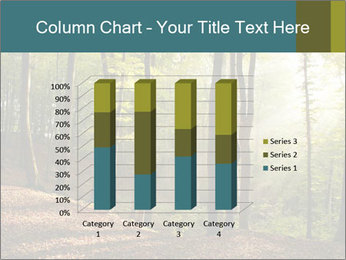 Backlight In Forest PowerPoint Template - Slide 50