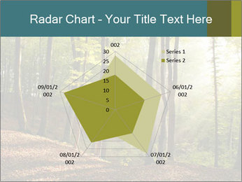 Backlight In Forest PowerPoint Template - Slide 51