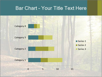 Backlight In Forest PowerPoint Template - Slide 52