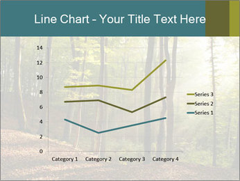 Backlight In Forest PowerPoint Template - Slide 54