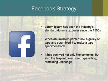 Backlight In Forest PowerPoint Template - Slide 6